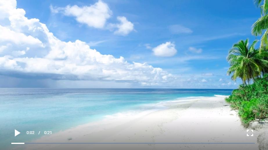 免版权视频素材:白沙滩和棕榈树
