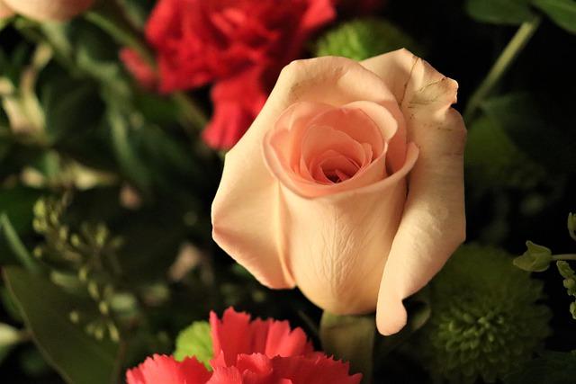 Rose Flower Bouquet Petals  - alisonshelley90 / Pixabay